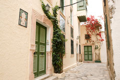 Street with wooden doors and bush with flowers in Mahdia. Royalty Free Stock Photos
