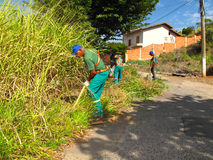 Street workers getting digging heavy bushes in poorly kept neighborhood. Street workers getting rid of heavy bushes in poorly kept neighborhood Stock Image
