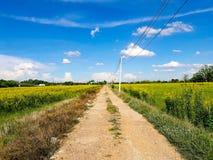 Streeth de la granja foto de archivo