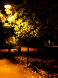 Streetlamp in autumn. Evening with tree Royalty Free Stock Image
