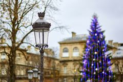 Streetlamp and Christmas tree in the background Stock Photography