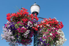 Streetlamp And Flower Baskets Royalty Free Stock Photography