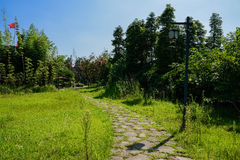 Streetlamp by weedy path in sunny summer morning. A streetlamp by weedy path in sunny summer morning,Chengdu,China Stock Photography
