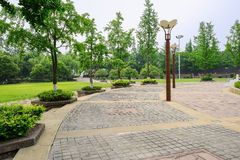 Streetlamps on circular pavement in sunny summer afternoon Stock Photography