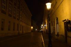 Streetlamps på natten på en lappad väg arkivbild