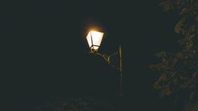 streetlight lizenzfreie stockfotos