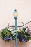 Streetlight with flowers decoration Stock Photos