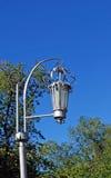 Streetlight i parkera samara Arkivfoto