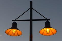 Streetlight i Vancouver Royaltyfria Foton
