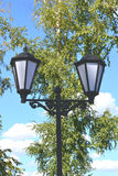 Streetlight. Interesting black street lamp in the park Royalty Free Stock Photos