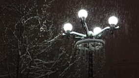 The streetlight lighting the snow-covered trees and the falling   snow in the dark evening. stock video