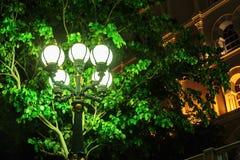 Streetlight at night Stock Photo