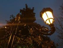 Streetlight på natten prydnadar Arkivbild