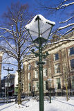 Streetlight in the Snow Royalty Free Stock Image