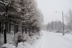 Streetlight on a snowy road in the winter Park. Streetlight on snow-covered road in winter Park, deep snow, beautiful winter trees, snowfall Stock Photo