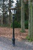 Streetlight 't Loo. Streetlight at royal garden Palace 't Loo Apeldoorn The Netherlands Stock Photography