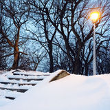 Streetlight and trees in the snowy park Royalty Free Stock Image