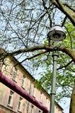 Streetlighting tipico a Berlino Fotografia Stock Libera da Diritti