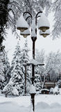 Streetlights covered with a thick snow layer Stock Photos