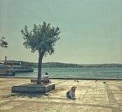 Streetphotography i Istanbul, Turkiet arkivbilder