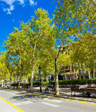 In the streets of Barcelona. Royalty Free Stock Images
