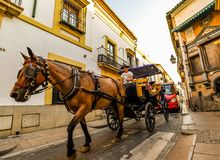 The streets of Cordoba - Spain. Cordoba/ Spain - 08/20/18 - People on a horse drawn tour in the old town area of Cordoba - Spain royalty free stock photos