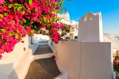 Fira, Santorini island, Greece. Traditional and famous white hou Stock Photography