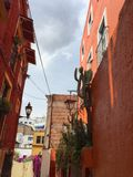 Streets of Guanajuato. Narrow streets of Guanajuato with cacti Stock Photos