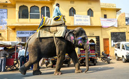 Streets of Jaipur, Rajasthan, India. An indian man riding his elephant in the streets of Japur Stock Photos