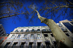 The Streets of Lisbon, Portugal Royalty Free Stock Images