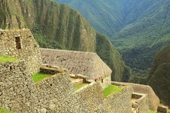 On the streets of Machu Picchu. Stock Photography