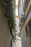 streets of Marbella in Spain with flowers and plants on the faca Royalty Free Stock Photos