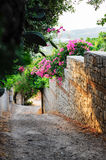 Streets of Old Datca. A street view from old Datca Turkey Stock Photography