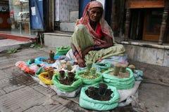 Streets of Old Delhi Royalty Free Stock Photos