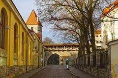 Streets of old Tallinn, Estonia, Europe Royalty Free Stock Images