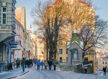 Streets And Old Town Architecture Estonian Capital Royalty Free Stock Image