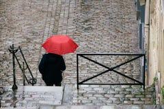 Streets of Paris in the Rain Stock Photo