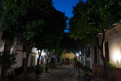 The streets of Seville at night in Seville, Spain, Europe stock photos