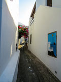 Streets of Stromboli. View of a narrow street in the volcanic island of Stromboli, with white houses, flowers and plants in the foreground and the volcano in the Royalty Free Stock Image