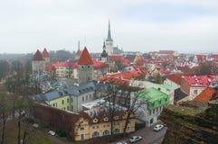Streets Tallinn. Stock Photo