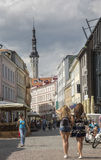 Streets of Tallinn in summer Royalty Free Stock Photo