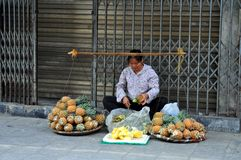 Streets of Vietnam - Pineapple seller Royalty Free Stock Photo