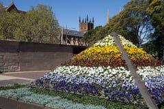 Streetscape z kolorowym kwiecistym pokazem pansies z katedrą w tle zdjęcie royalty free