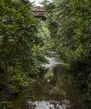 Streetsin Edimbourg - arbres et eau photographie stock