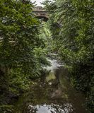 Streetsin Edinburgh - trees and water. This image shows a view some trees and a stream in Edinburgh. It was taken on a sunny day in August 2018 stock photography