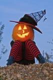 Strega della testa della zucca di Halloween Fotografia Stock Libera da Diritti
