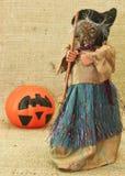 Streghe brutte terrificanti e Jack Lantern Pumpkin di Halloween Fotografia Stock Libera da Diritti