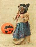 Streghe brutte terrificanti e Jack Lantern Pumpkin di Halloween Immagine Stock Libera da Diritti
