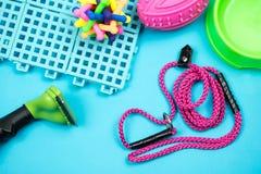 Streicheln Sie Leine mit Gummispielzeug auf blauem Hintergrund stockfoto