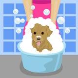 Streicheln Sie waschenden Hund des Groomer mit Seifenschaum im blauen Waschbecken im Badezimmer vektor abbildung